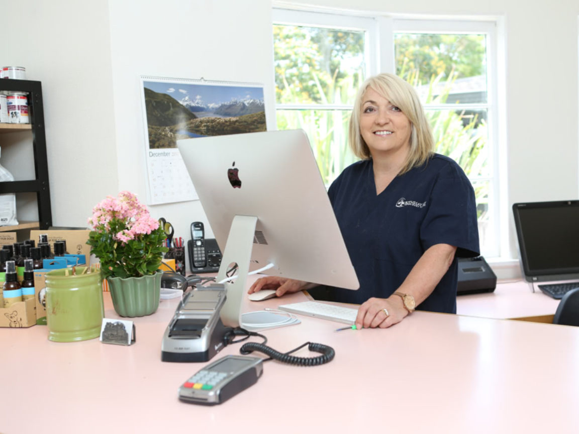 Rothesay Bay Vet Specialist Referral
